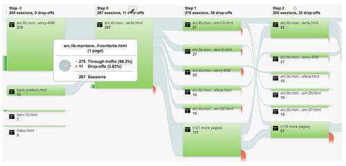 Google Analytics user flow view