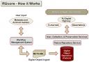 Role of the WMS in the RUcore cyberinfrastructure