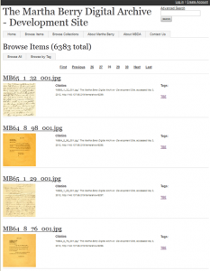 Screen Capture of Browse Items Display
